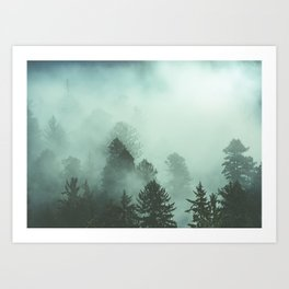 Magnificent Morning - Foggy Redwood Forest Nature Photography Art Print
