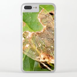 Forest Adventures Clear iPhone Case