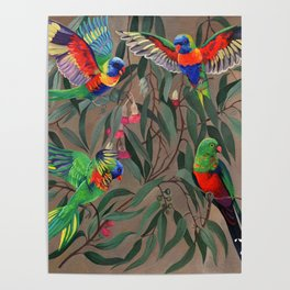 Birds of Paradise. Poster
