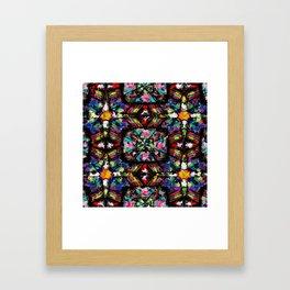 Ecuadorian Stained Glass 0760 Framed Art Print