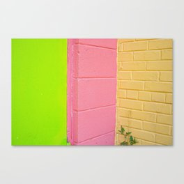 Green Pink And Orange Canvas Print
