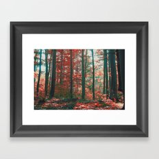 into the woods 11 Framed Art Print