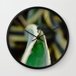 Floral photography print | Greenery in Isreal, Tel Aviv | Colourful travel wanderlust photography ar Wall Clock
