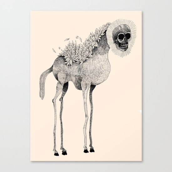 Tall Horse With Skull Canvas Print