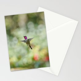 Hummingbird Amethyst Woodstar Stationery Cards