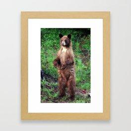 Bear Aware Framed Art Print