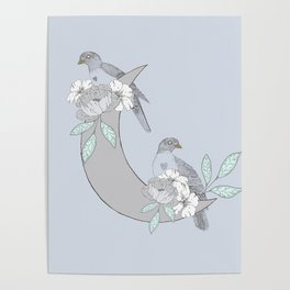 Love Dove Pair Poster