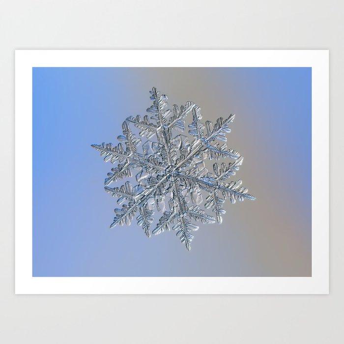 Real snowflake macro photo - 13 February 2017 - 3 Art Print