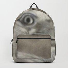 Aetius Backpack