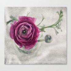 Pink III Canvas Print