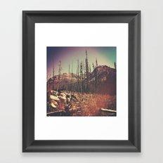 Burnt Forest I Framed Art Print