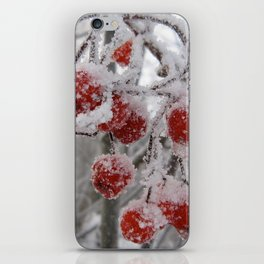 The Frost iPhone Skin