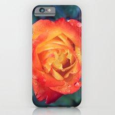 Multicolor Rose iPhone 6s Slim Case