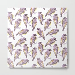 Eastern Yellow robin or Eopsaltria australis bird watercolor painting Metal Print