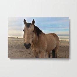"Horse ""Spirit"" Metal Print"