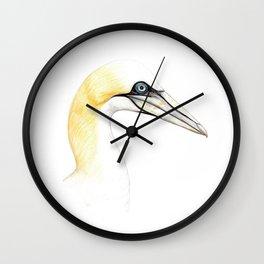 Northern gannet Wall Clock