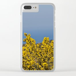 Landscape on mountain with blue sky Clear iPhone Case