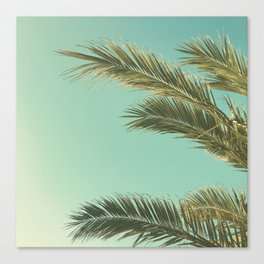 Autumn Palms II Canvas Print