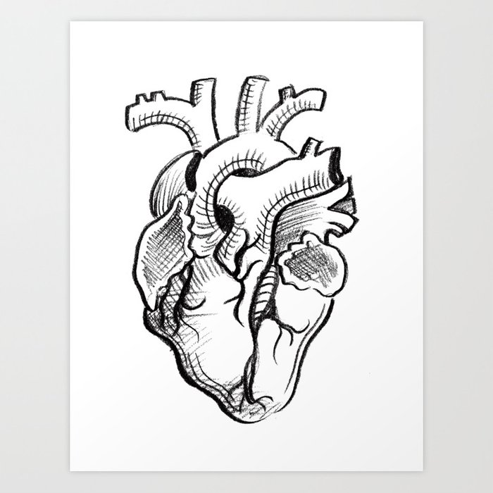 Charcoal Anatomical Heart Sketch Art Print By Corpgraffitiart