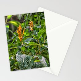 Yellow flower in the rain forest Stationery Cards