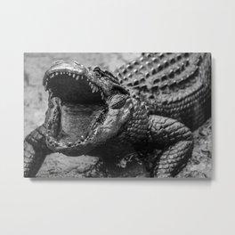 Gaping Gator Metal Print