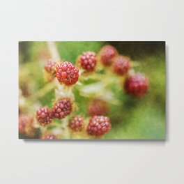 Wild berries #6 Metal Print