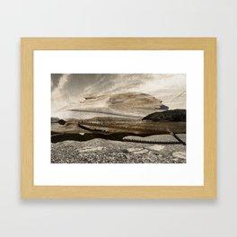 swordfish Framed Art Print
