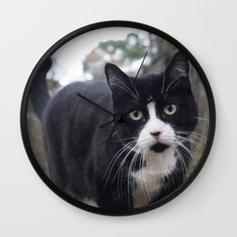 Cat on the prowl Wall Clock