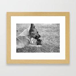 munchies Framed Art Print