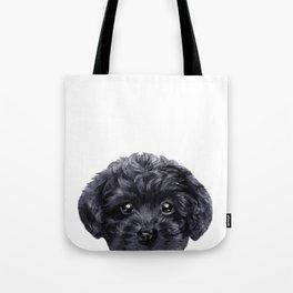 Black toy poodle Dog illustration original painting print Tote Bag