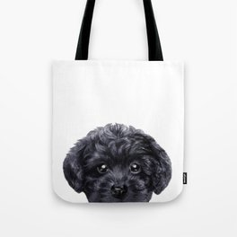 Black toy poodle Dog illustration original painting print Tote Bag