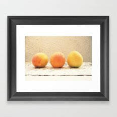 3 apricots Framed Art Print