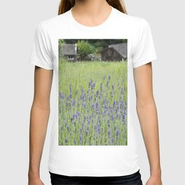 Lavender fields forever T-shirt