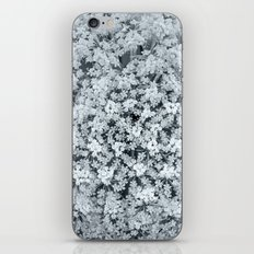 Queen Anne's Lace Flower in Cool Monchrome Black and White iPhone & iPod Skin