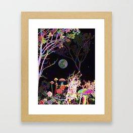 Colorful Night Framed Art Print