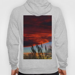 Winter Sunset Hoody