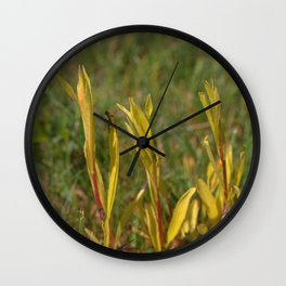 Divergent Grass Wall Clock