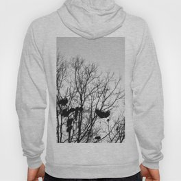 Blackbird | Black, White and Grey Bird in the Tree Silhouette Photography Hoody