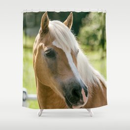 Haflinger Mare Ultra HD Shower Curtain