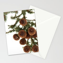 (Spruce or Fir) Cones Stationery Cards