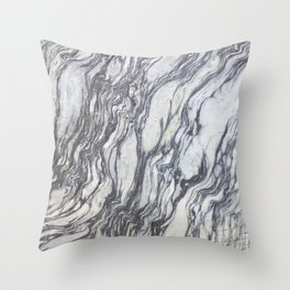 Wild Natural Marble Throw Pillow