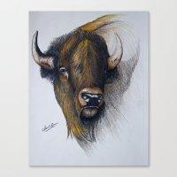 buffalo Canvas Prints featuring Buffalo by Devon