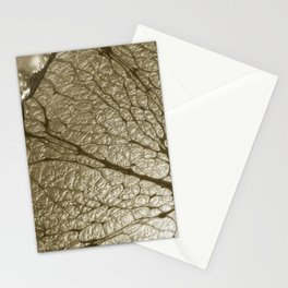 ChampagneCola Stationery Cards