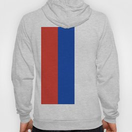 Flag of Russia Hoody