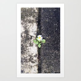 The In-between  Art Print
