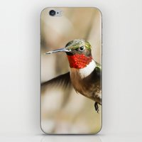 ruby iPhone & iPod Skins featuring Ruby by Bird Junker