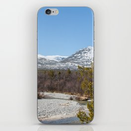 Forest in Norway iPhone Skin