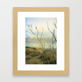 Summer 02 Framed Art Print