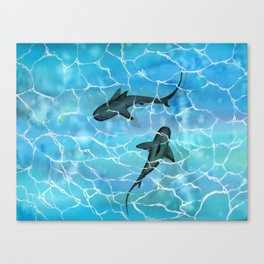 friendly waters Canvas Print