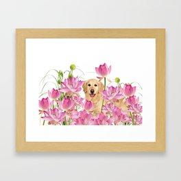 Labrador Retrievers with Lotos Flower Framed Art Print